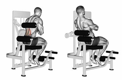 Untere Rückenmuskulatur trainieren:Foto von der Übung Hyperextension Maschine.
