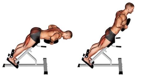 Untere Rückenmuskulatur trainieren:Foto von der Übung Hyperextension mitGewicht.
