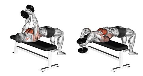 Brustmuskeln trainieren mit Hanteln: Foto von der Übung Kurzhantel Überzüge.