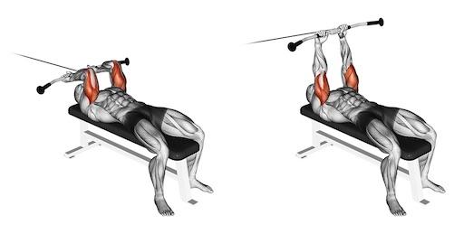 Trizeps Übungen Fitnessstudio: Foto von der Übung Stirndrücken amKabelzug.