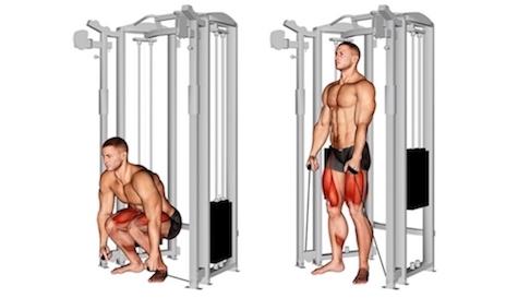 Übungen unterer Rücken im Stehen: Foto von der Übung KabelzugKreuzhebenklassisch.