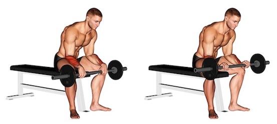 Unterarm trainieren ohne Geräte:Foto von der Übung Unterarm CurlsLanghantel Obergriff.