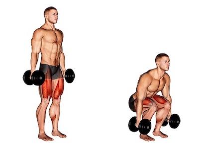 Beintraining Muskelaufbau: Foto von der Übung EngeKniebeuge mitKurzhanteln.
