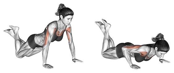 Brustmuskeln trainieren Frau: Foto von der Übung Liegestützen auf Knien.