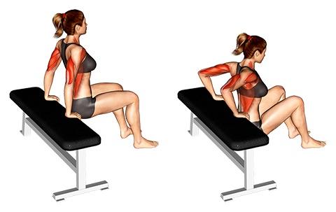 Übungen gegen Winkearme: Foto von der Übung Dips fürAnfänger.