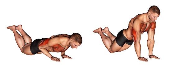 Übungen gegen Winkearme: Foto von der Übung EngeLiegestütze kniend.