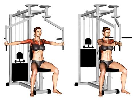 Brustmuskel Frau trainieren:Foto von der Übung Butterfly am Gerät.