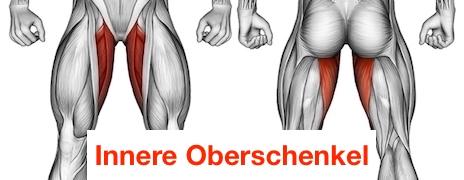 Foto von der innere Oberschenkel Muskulatur.