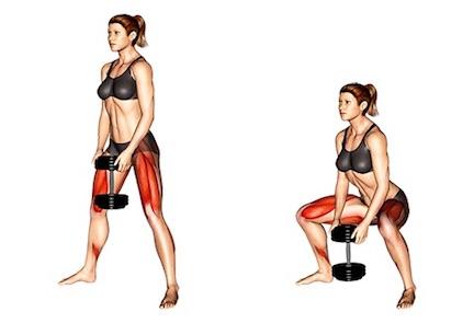 Innere Oberschenkel Übungen:Foto von der Übung BreiteKurzhantelKniebeugen.