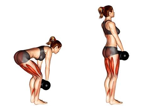 Kurzhantel Übungen Frau: Foto von der Übung Kreuzheben.