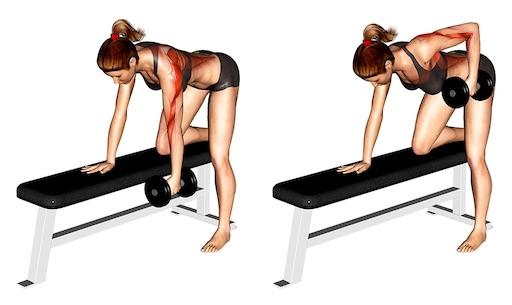 Kurzhantel Übungen Frau: Foto von der Übung Ruderneinarmig.