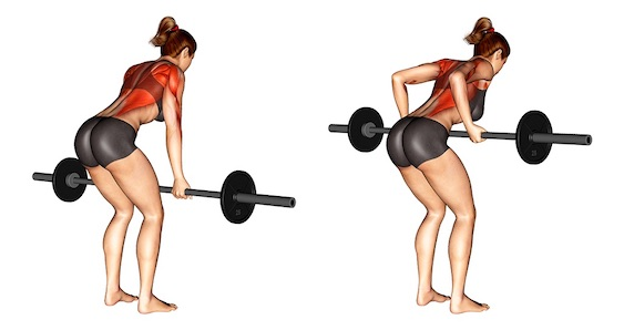 Langhantel Übungen Frauen: Foto von der Übung VorgebeugtesLanghantelrudern.