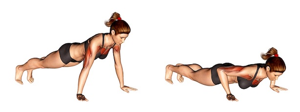 Übungen für straffe Brust:Foto von der Übung KlassischeLiegestütze.
