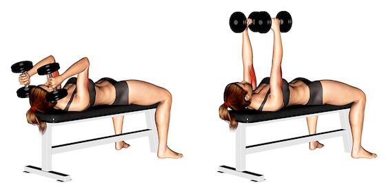 Übungen gegen Schwabbelarme:Foto von der Übung KurzhantelStirndrückenbeidarmig.