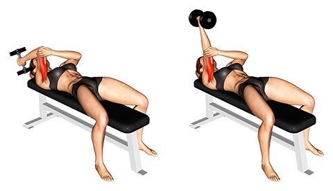 Übungen gegen Schwabbelarme:Foto von der Übung KurzhantelStirndrückeneinarmig.