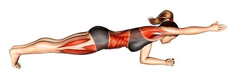 Foto von der Übung Plank Übung Arm hoch.