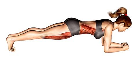 Foto von der Übung Plank Übung klassisch.