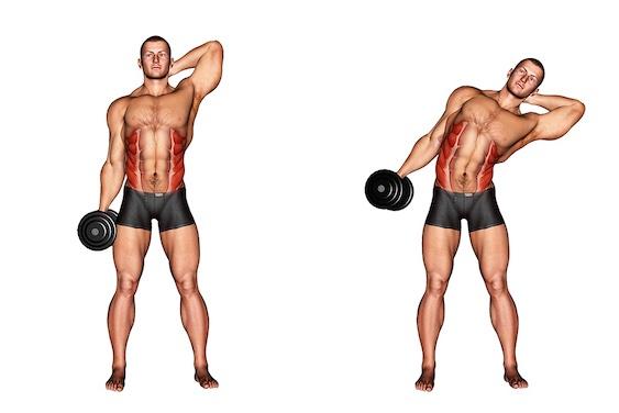 Bauchübungen mit Hanteln: Foto von der Übung seitliches Rumpfbeugen.